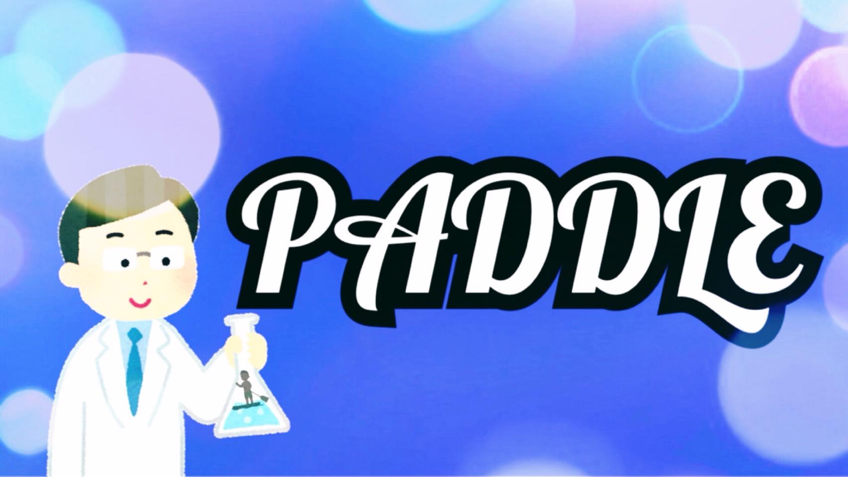 「PADDLE」のイメージ
