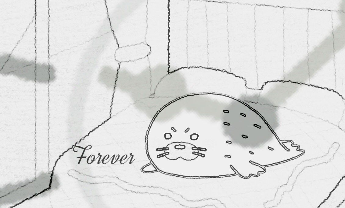「Forever」のイメージ